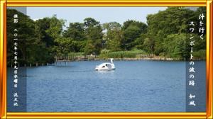 P170719swaanboat_1310